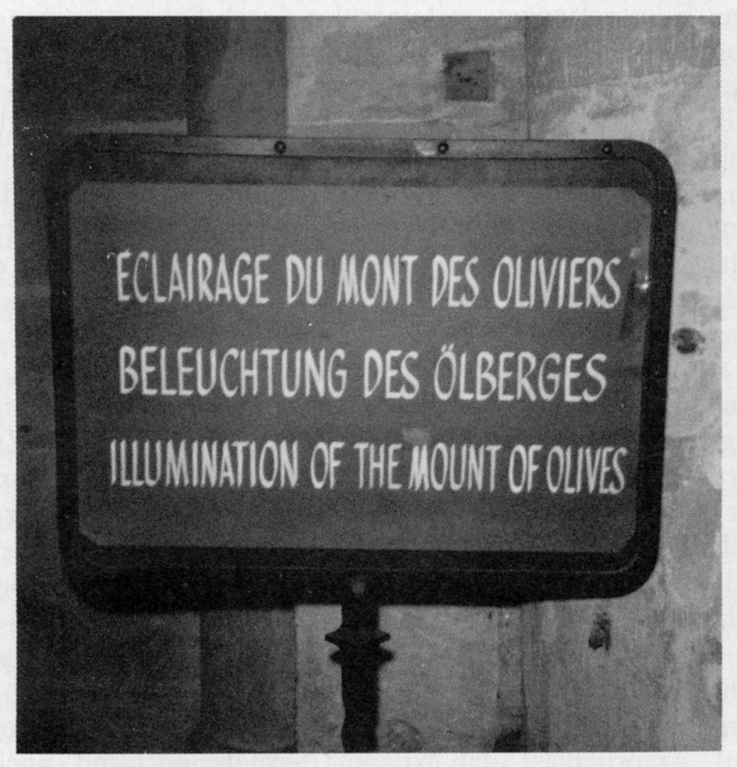 Eclairage du Mont des Oliviers | Beleuchtung des Ölbergs | Illumination of the Mount of Olives | © Melusine Huss